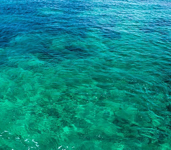 Faïence Décorée - Bleu Azur