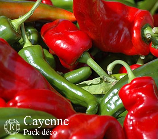Plain Cayenne