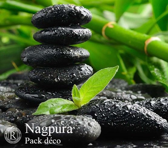 Nagpura
