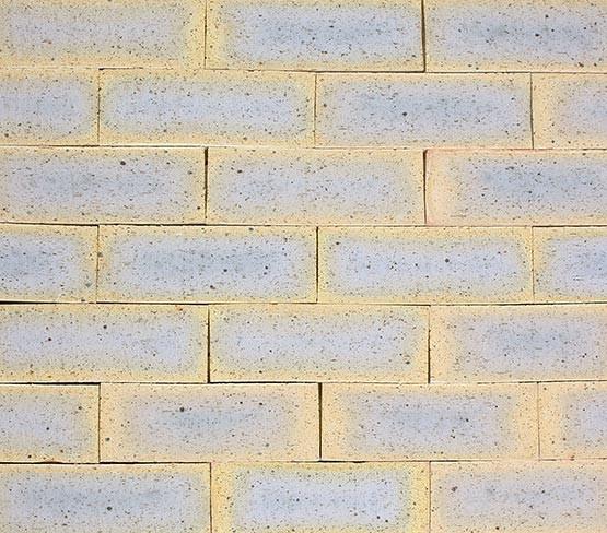 Leopard Facing Brick